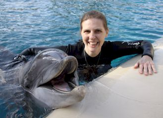 Dawn with Dolphin