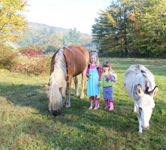 Kids with Donkey and Pony